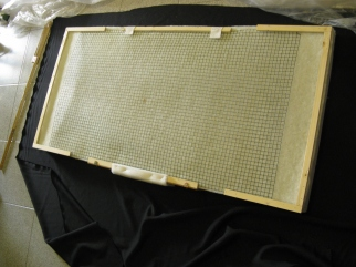 eco-fiber panel construction